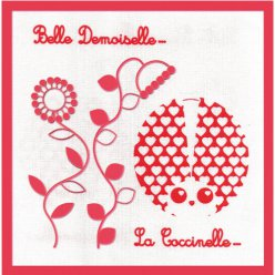 kit broderie traditionelle belle demoiselle la coccinelle