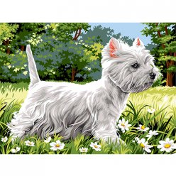 canevas antique westie  40x50cm