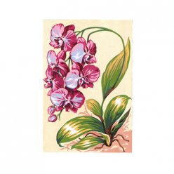 canevas antique orchidees  30x40cm