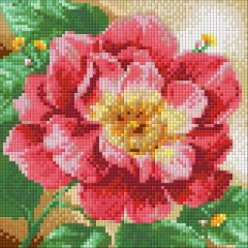 diamond painting 20x20  pivoine