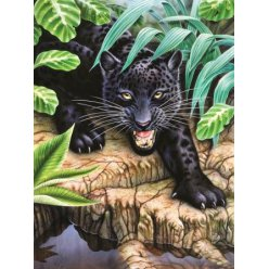 diamond painting 40x30  black panther