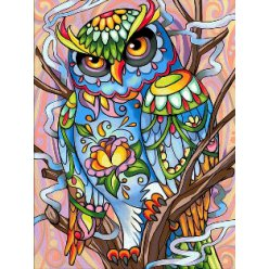 diamond painting 30x40  hibou multicolore