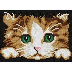diamond painting 18x13  tete de chaton