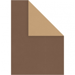 carte a4 bicolore marron 10 feuilles