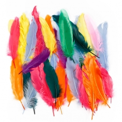 plumes indiennes 12  15 cm assortiment 350 pieces