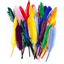 plumes indiennes 17  20 cm assortiment 250 pieces