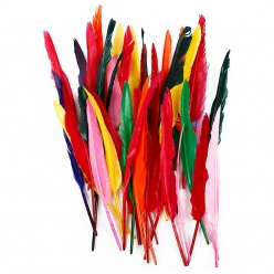 plumes indiennes 29  31 cm assortiment 100 pieces