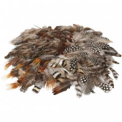 plumes naturelles 144 pieces 6 types