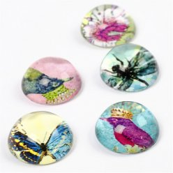 cabochons ronds bombes faune 5 pieces