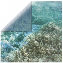 papier scrapbooking barrier reef