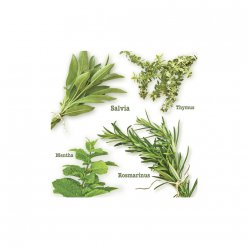serviette herbes de jardin it