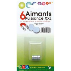 aimant o 10 mm puissance xxl 6 pieces