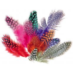 plumes pintades colorees 125 cm