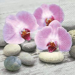 serviette orchids on stone 20 pieces