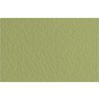 papier fabriano tiziano paquet 25 f a3 160 g vert mousse