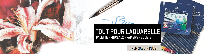 aquarelle beaux arts