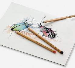 Coffret crayons couleur et crayons pastel