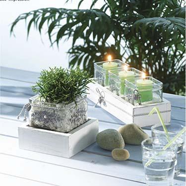 Vases et autres supports en verre