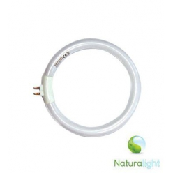 tube circulaire naturalight a economie d energie 12w