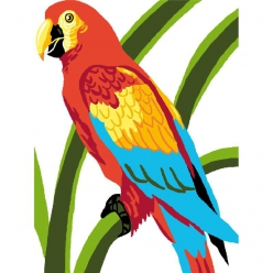 kit canevas enfant perroquet 20x25cm