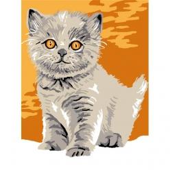kit canevas enfant chaton fibie 20x25cm