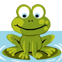 kit canevas soudan 20x20 cm grenouilles