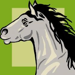 kit canevas soudan 25x25cm cheval