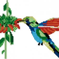 kit a broder au point de croix  colibri 11x16 cm