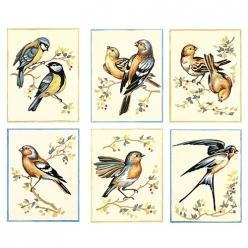 serie de 6 canevas assortis oiseaux