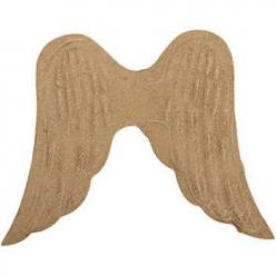 ailes13cm5pices