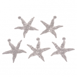 etoiledemerenacrylavecoeillet45cm