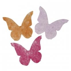 papillonentoffenontisse4 5cm