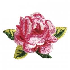 patch rose