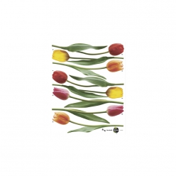 wall stickertulipes54cm