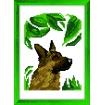 kitbroderaupointdecroix chien