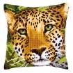 kitcoussinpointdecroixleopard